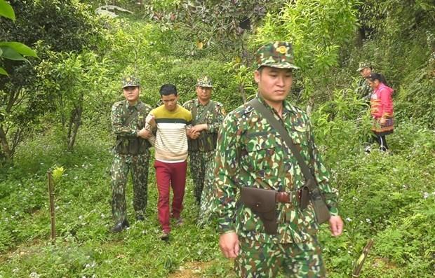 Arrestan a personas por cruzar ilegalmente la frontera en provincia vietnamita hinh anh 1