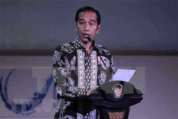 Indonesia aumentara deficit presupuestario 2021 en pos del desarrollo nacional hinh anh 1
