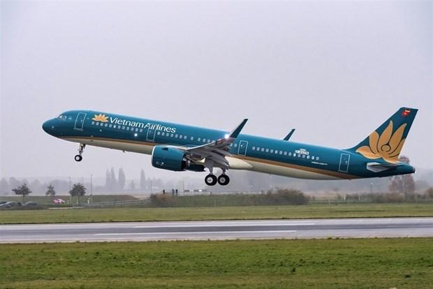 COVID-19 causa graves perdidas al sector aerocomercial de Vietnam hinh anh 1