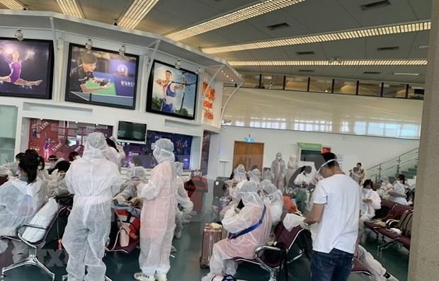Repatriados mas de 500 vietnamitas desde Singapur y Taiwan por COVID-19 hinh anh 1