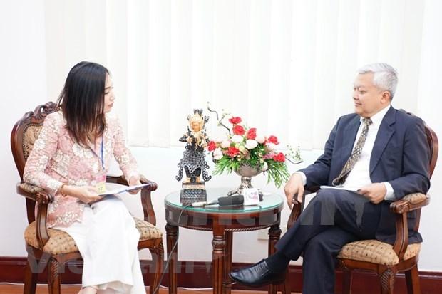 Aprecia embajador papel de Vietnam como presidente de ASEAN hinh anh 1