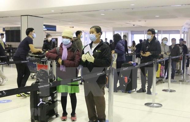 Repatrian a 340 ciudadanos vietnamitas varados en Australia hinh anh 1
