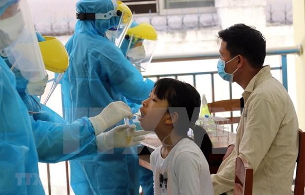 Realizan pruebas de COVID -19 a 700 turistas de Ciudad Ho Chi Minh encontrados en Da Nang hinh anh 1