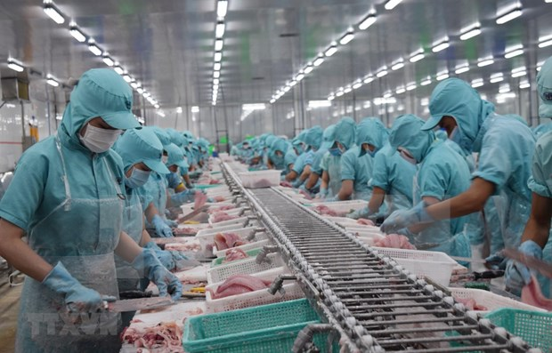Aprueba Vietnam plan para implementacion de EVFTA hinh anh 1