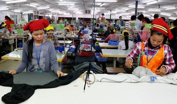 Union Europea comienza a retirar parte de preferencias arancelarias a Camboya hinh anh 1