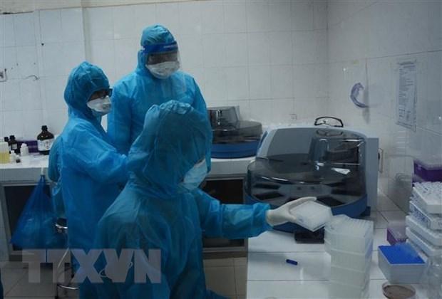 Vietnam registra 14 casos nuevos de coronavirus, la mayoria en ciudad de Da Nang hinh anh 1