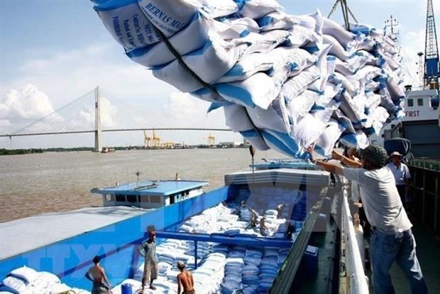 Aumentan las exportaciones de arroz de Vietnam casi un 11 por ciento hinh anh 1