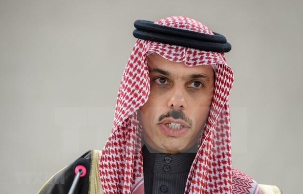 Vietnam y Arabia Saudita discuten medidas para fortalecer lazos bilaterales hinh anh 1