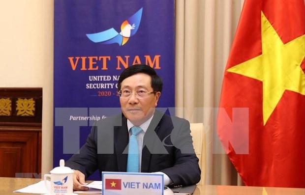 Pide Vietnam mayor cooperacion internacional en lucha contra pandemia hinh anh 1