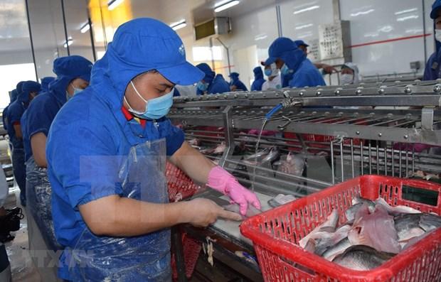 EVFTA ofrece oportunidades para productos acuaticos vietnamitas hinh anh 1