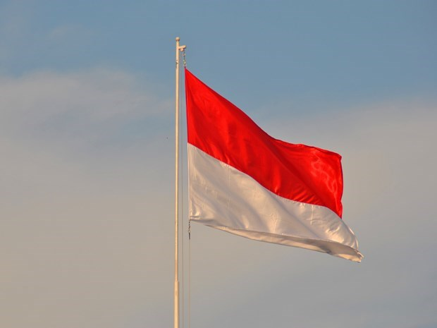 Celebran Dia Nacional de Indonesia en Hanoi hinh anh 1
