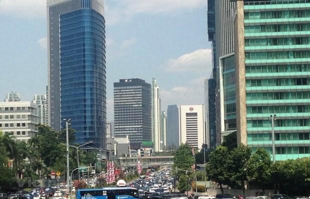 Indonesia suspende proyecto de traslado de capital para hacer frente a pandemia hinh anh 1