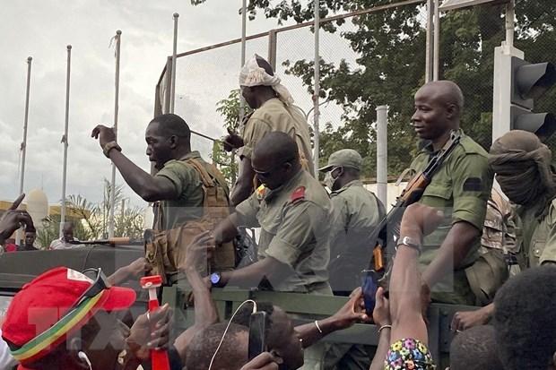 Vietnam exhorta a recuperar la paz en Mali hinh anh 1