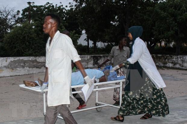 Vietnam llama a incrementar asistencia internacional a Somalia hinh anh 1