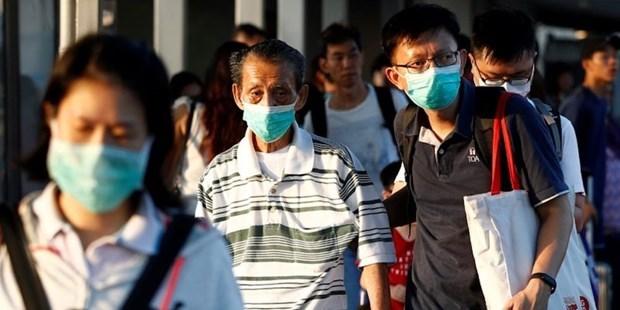 Singapur continua flexibilizando las restricciones de viaje hinh anh 1
