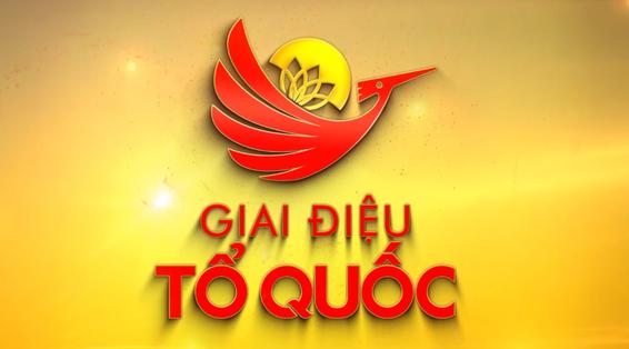 """Celebran concierto """"La Melodia de la Patria"""" para conmemorar Dia Nacional de Vietnam hinh anh 1"""