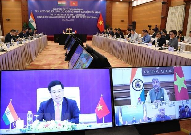 Comision Conjunta Vietnam- India celebra su XVII reunion hinh anh 1
