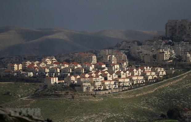 Vietnam llama a Israel a dejar de expandir asentamientos hinh anh 1