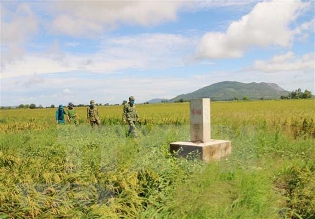Vietnam aplica sanciones estrictas contra vehiculos en zonas fronterizas hinh anh 1