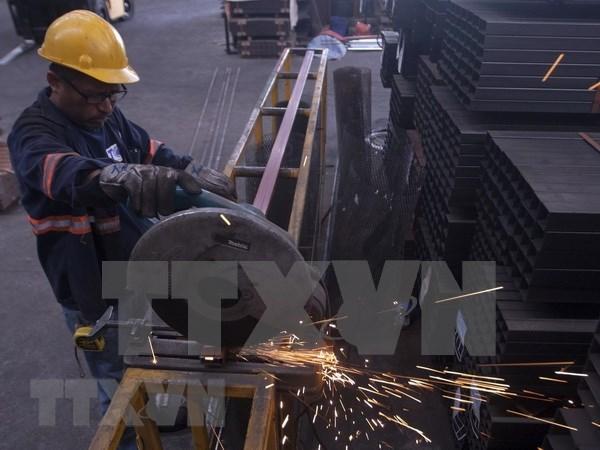 Indonesia considera retrasar proyecto de metalurgia debido al COVID-19 hinh anh 1