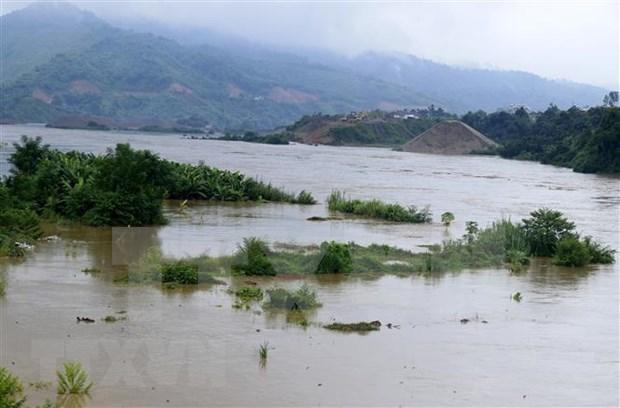 Provincia vietnamita de Vinh Phuc empenada en mitigar impactos de inundaciones hinh anh 1