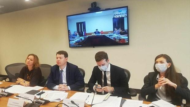 Vietnam y Rusia discuten proyectos de inversion prioritarios en medio del COVID-19 hinh anh 1