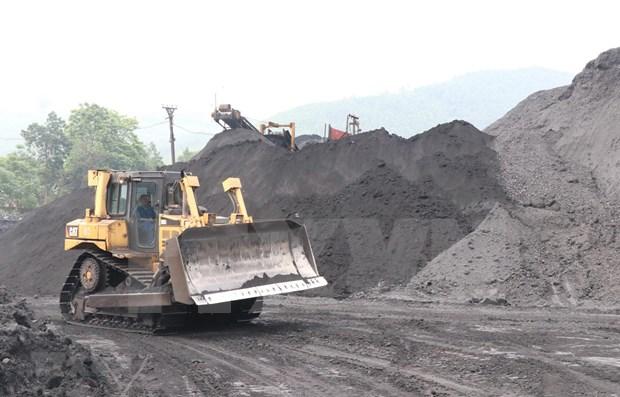 Produccion de carbon de Indonesia preve aumentar 11 por ciento en 2021 hinh anh 1