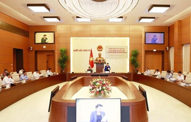 Resalta esfuerzos de Vietnam por desempenarse como presidente de AIPA hinh anh 1