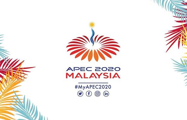 Efectuaran en linea la Cumbre de APEC 2020 en diciembre proximo hinh anh 1