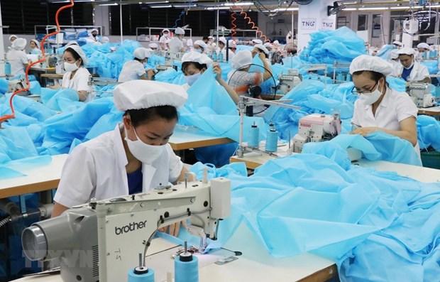Otorga Vietnam mas de siete mil 200 certificados de origen para productos exportados a UE hinh anh 1