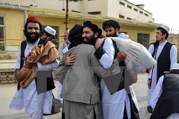 Apoya Vietnam proceso de paz integral en Afganistan hinh anh 1