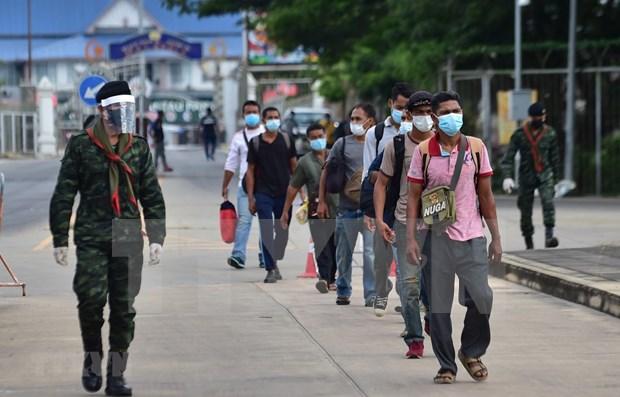Tailandia registra primer contagio comunitario del COVID-19 tras 101 dias hinh anh 1