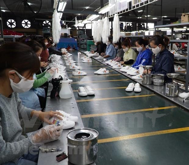 Vietnam emite mas de siete mil certificados de origen tras un mes de vigencia de EVFTA hinh anh 1