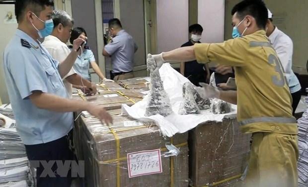 Vietnam enjuicia a acusado en red de comercio ilegal de cuernos de rinoceronte hinh anh 1