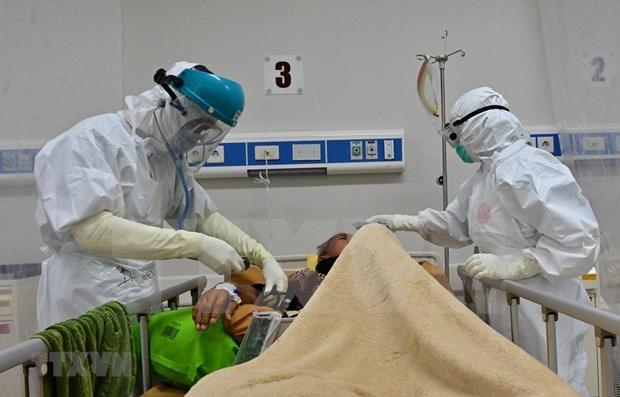 COVID-19: Indonesia reporta tres mil 444 nuevos casos y 85 fallecidos hinh anh 1