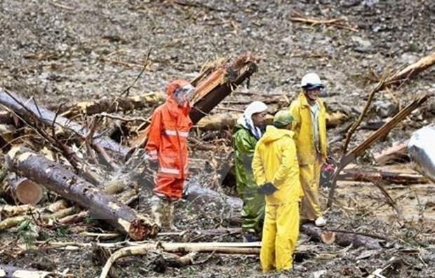 Dos vietnamitas desaparecidos en Japon por el tifon Haisen hinh anh 1