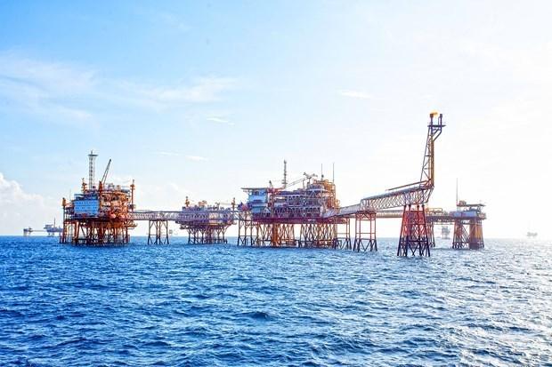 Empresa vietnamita supera meta de explotacion de petroleo y gas hinh anh 1