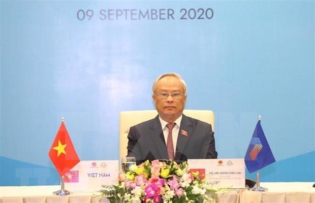 ASEAN y AIPA deben mantenerse unidas, afirma vicepresidente del Parlamento vietnamita hinh anh 1