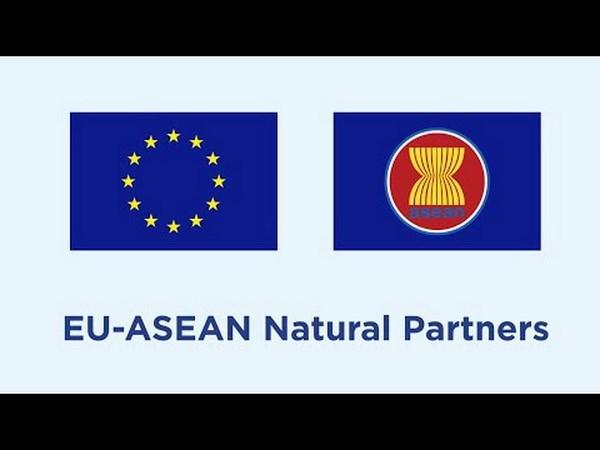 Union Europea anuncia nueva asociacion con 19 instituciones de investigacion de la ASEAN hinh anh 1