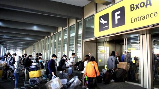 Mas de 340 ciudadanos vietnamitas regresan al pais de origen desde Rusia hinh anh 1