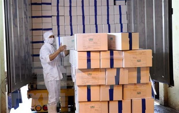 Vietnam exporta primer lote de camarones a la Union Europea bajo EVFTA hinh anh 1