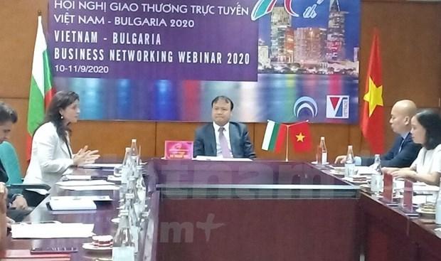 Vietnam y Bulgaria refuerzan lazos comerciales hinh anh 1