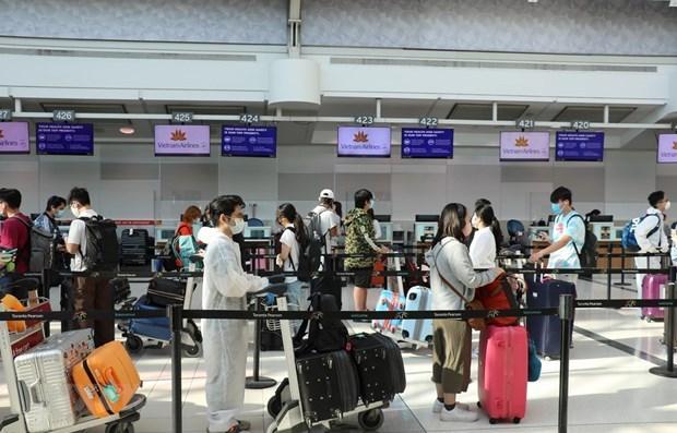 Regresan a casa cerca de 350 ciudadanos vietnamitas varados en Australia hinh anh 1