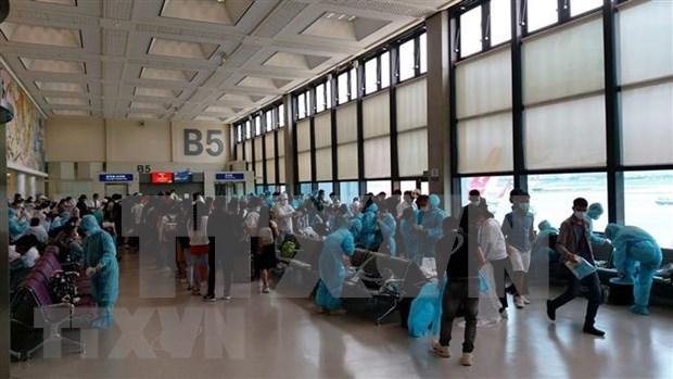 Regresan a casa mas de 600 vietnamitas varados en Singapur y Malasia hinh anh 1