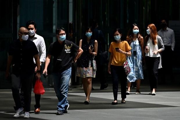 Singapur continua reportando datos de empleo negativos en segundo trimestre hinh anh 1