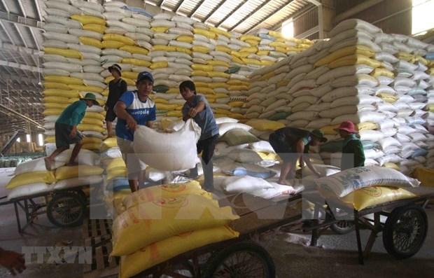 Comite Permanente del Parlamento vietnamita ratifica la compensacion de la reserva nacional de arroz hinh anh 1