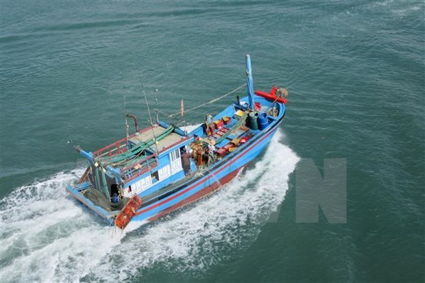 Provincia vietnamita acelera instalacion de equipos de monitoreo en barcos pesqueros hinh anh 1