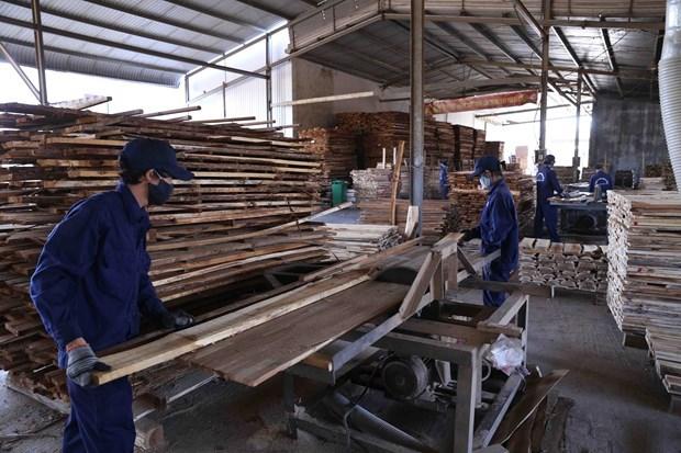 Exportaciones madereras de provincia central de Binh Dinh aumentan a pesar de la pandemia hinh anh 1