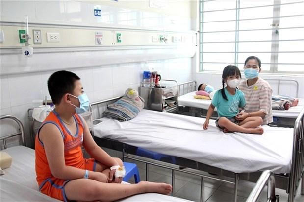 Disminuyen los casos de dengue en Vietnam hinh anh 1
