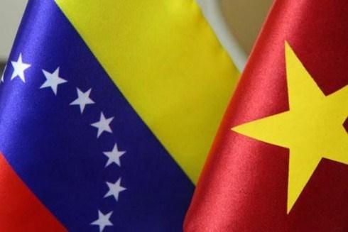 Vietnam y Venezuela realizan octava consulta politica hinh anh 1